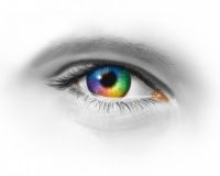 Leadership Sees Through Different Lenses - Managing for Performance